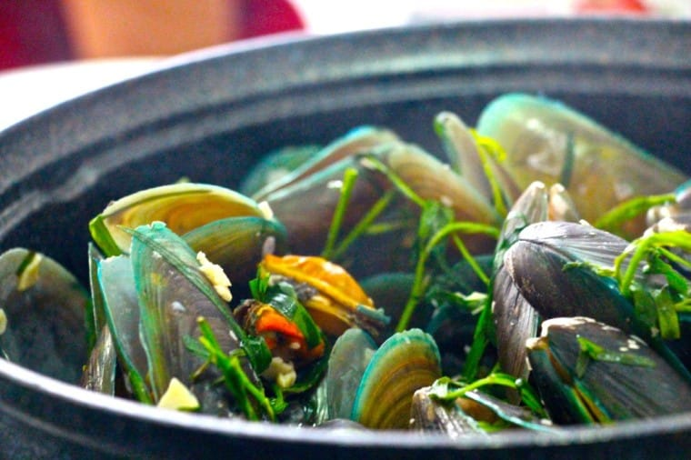 French style tarragon & white wine mussels