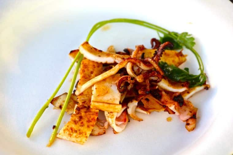Asian style BBQ Squid (Sotong)